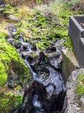 Una opinión del paisaje de las caídas del tumwater en el tumwater Washington fotografía de archivo libre de regalías