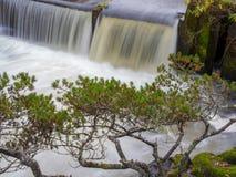 Una opinión del paisaje de las caídas del tumwater en el tumwater Washington foto de archivo