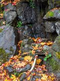 Una opinión del paisaje de las caídas del tumwater en el tumwater Washington imagen de archivo