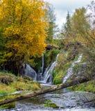 Una opinión del paisaje de las caídas del tumwater en el tumwater Washington imagenes de archivo