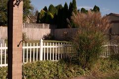 Una opinión residencial del patio trasero Fotografía de archivo