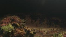 Una opinión superior el pescador con una caña de pescar en la orilla del río Tiroteo del abejón metrajes