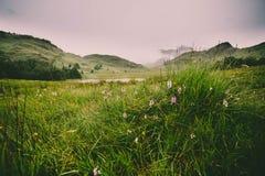 Una opini?n del paisaje de la monta?a en Cumbria imagenes de archivo