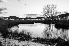 Una orilla del lago en Colfiorito Umbría en invierno con nieve y el árbol Foto de archivo libre de regalías