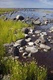Una orilla pedregosa. Bornholms. Dinamarca Imágenes de archivo libres de regalías