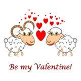Una oveja y un espolón en amor con el texto Imagen de archivo libre de regalías