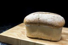 Una pagnotta fresca di pane crostoso Fotografie Stock