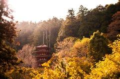 Una pagoda di cinque storie al tempio di Hasedera, Nara, Giappone Immagini Stock Libere da Diritti