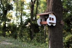 Una pajarera inusual en el bosque imágenes de archivo libres de regalías