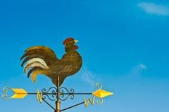 Una paleta de viento del pollo Imagenes de archivo