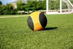 una palla medica da 10 libbre su un campo verde del tappeto erboso Immagini Stock