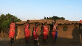 Una panoramica di un canto e di un salto di cinque uomini di maasai in un villaggio vicino al maasai Mara archivi video
