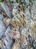 Una pared de la roca en tierra escocesa Fotografía de archivo libre de regalías