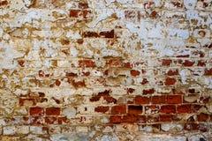 Una pared de ladrillo roja vieja con caído del yeso blanco Fotos de archivo libres de regalías