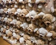 Una pared de los osos de peluche suaves foto de archivo libre de regalías