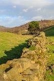 Una pared de piedra Foto de archivo
