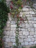 Una pared de piedra Fotos de archivo