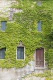 Una pared de piedra vieja con una puerta, escaleras, ventanas, demasiado grandes para su edad con la hiedra Aldea italiana Foto de archivo