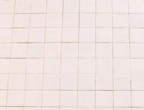 Una parete delle mattonelle della rosa Fotografia Stock
