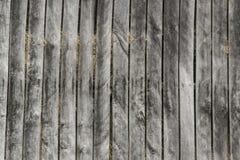 Una parete di vecchi bordi di legno 2 Immagini Stock