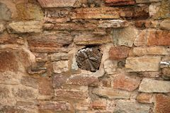 Una parete di vecchio castello Fotografie Stock Libere da Diritti