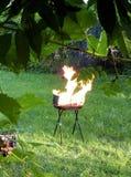 Una parrilla del verano en el fuego Entregado por la naturaleza verde - hierba y hojas Imagen de archivo