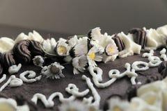 Una parte de la torta de chocolate con el ¡Ã del nejlepÅ del ¡e de la inscripción VÅ como parte del regalo de cumpleaños imagen de archivo