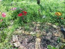 Una parte del nostro giardino fotografie stock