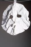 Una parte della mascherina Immagini Stock Libere da Diritti