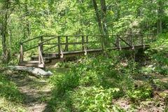 Una pasarela de madera en el bosque foto de archivo libre de regalías