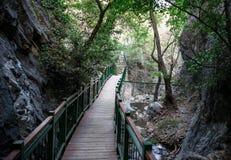 Una passeggiata del ponte a partire dalla caduta di nuovo al parcheggio, Platres, Cipro di Millomeris Immagine Stock Libera da Diritti