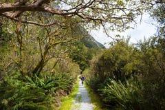 Una passeggiata della viandante in vallay prima dell'ascensione nelle montagne nel MI Fotografia Stock Libera da Diritti