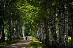 Una passeggiata delle coppie alla proprietà del paese di Tolstoy fotografie stock libere da diritti