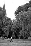 Una passeggiata in un parco Immagini Stock