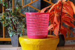 Una pattumiera rosa con un fondo floreale nel giardino immagine stock