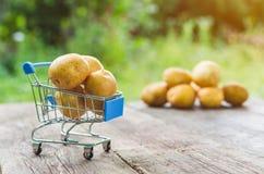 Una pequeña carretilla de las compras con las patatas en una tabla de madera vieja foto de archivo libre de regalías