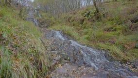 Una pequeña cascada del agua que corre abajo de un arbolado escarpado con las rocas en un parque en Escocia almacen de metraje de vídeo