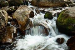 Una pequeña cascada en una corriente natural fotos de archivo