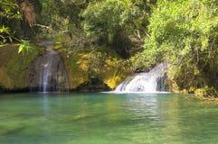 Una pequeña cascada en un lago del bosque Imagen de archivo libre de regalías