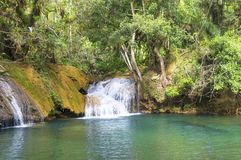 Una pequeña cascada en un lago del bosque Fotografía de archivo