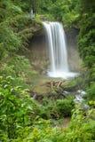 Una pequeña cascada hermosa en un bosque verde en Baviera Alemania foto de archivo