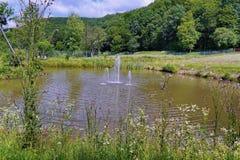 Una pequeña charca con un banco de wildflowers overgrown y de fuentes de agua que baten en el medio de él Un día de verano calien fotos de archivo