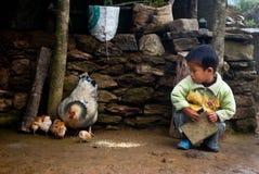 Una pequeña familia del muchacho y de la gallina de Lepcha foto de archivo