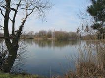 Una pequeña isla en el lago Fotos de archivo