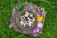 Una pequeña jerarquía con los huevos Fotos de archivo libres de regalías