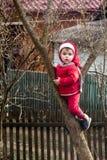 Una pequeña muchacha encantadora en rojo se vistió para arriba en un árbol entre dos ramas imagen de archivo