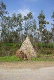 Pila del heno en Punjab imagenes de archivo