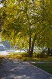 Una pequeña 'promenade' en el parque de la ciudad en Maglaj es rodeada por las hojas de otoño caidas Imagen de archivo