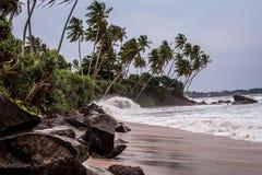Una pequeña tormenta en la playa rocosa de Sri Lanka ondas en la playa salvaje arboleda de la palma en el Océano Índico fotos de archivo