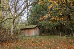 Una pequeña vertiente de madera acurrucada por debajo algunos árboles durante otoño fotos de archivo libres de regalías